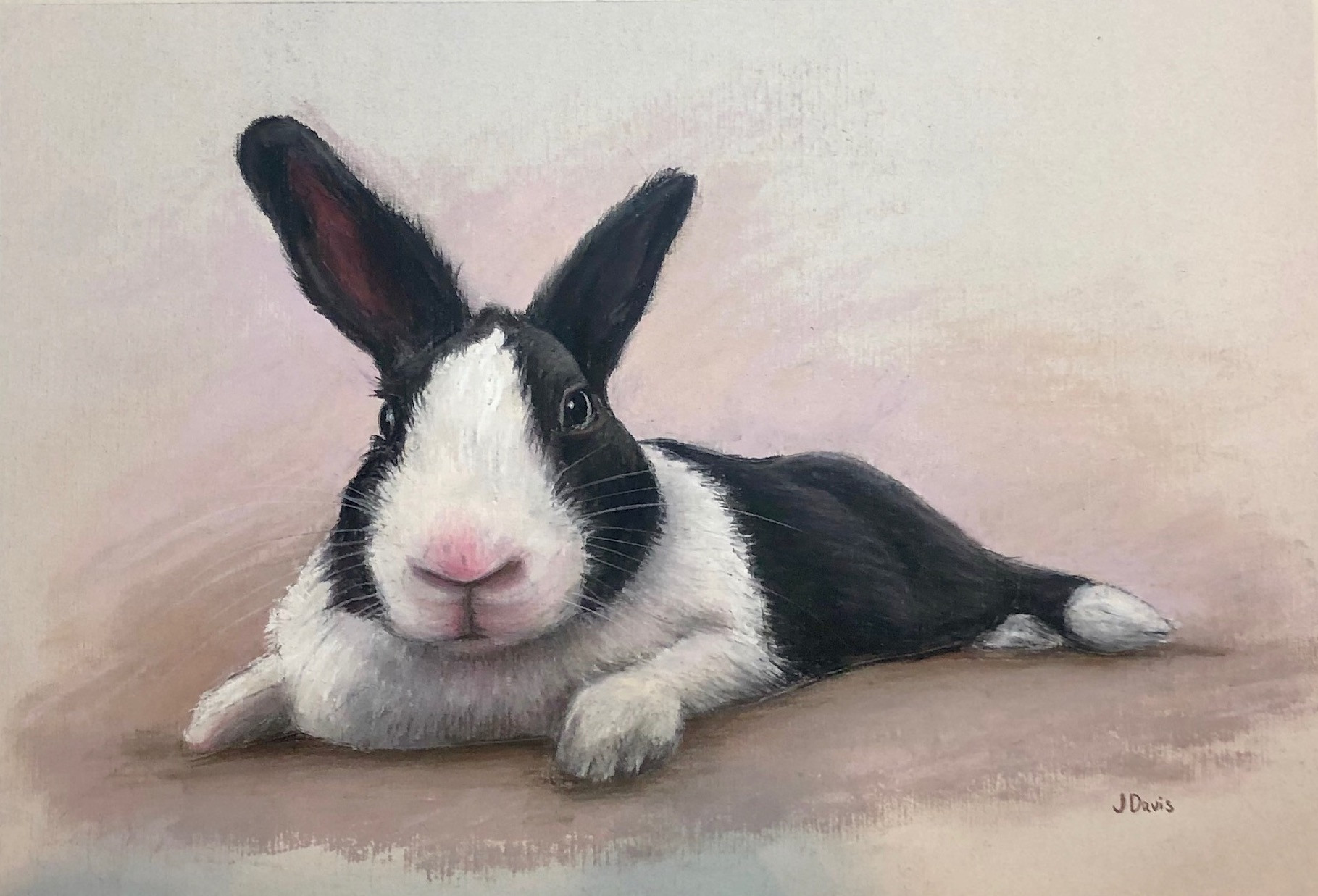 Rabbit commission