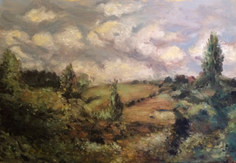Renoir's fields