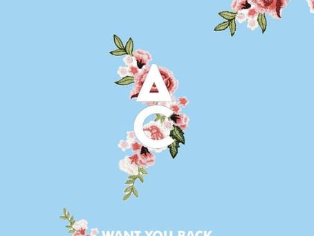 Antoine Chambe - Want You Back (Ft. OMZ)