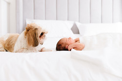 newborn photographer Dubai