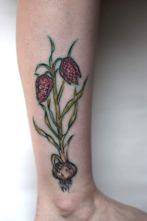 Snake's Head Fritillary on an awesome botanist.