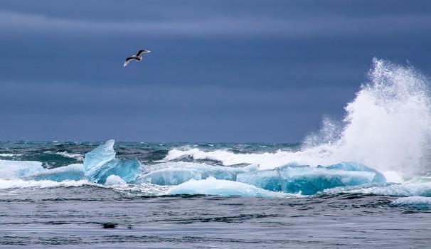 Icebergs in Atlantic ocean, Iceland