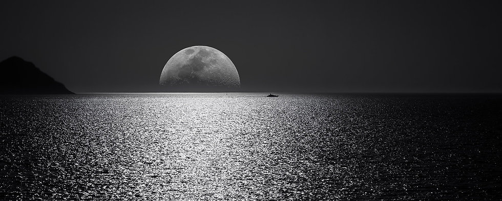 Agile Panache Moon