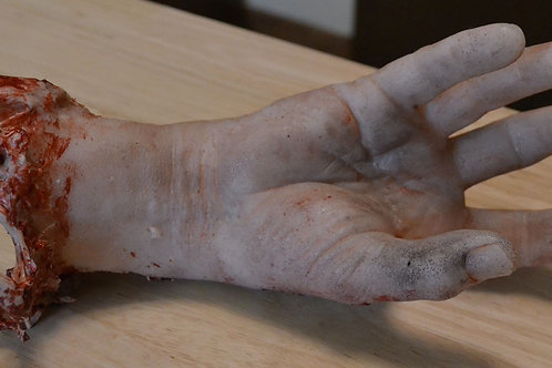 Male Hand/Arm