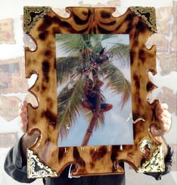 laminado_palma_vegigante_hecho_en_loiza