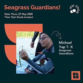 Seagrass Guardians!