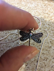 Dragonflys.JPG