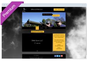 DNA Guns LLC