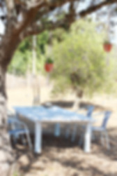 A white table with chairs under an olive tree at Petit-Hem