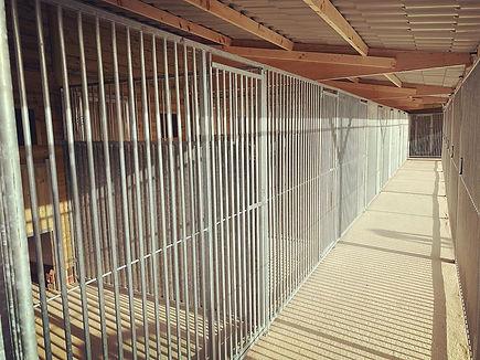Redwood corridor.jpg