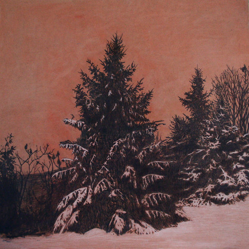 Evening Conifers SOLD