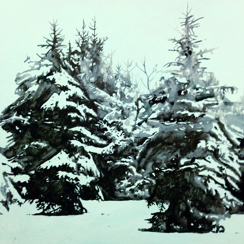 Winter, Conifers, SOLD