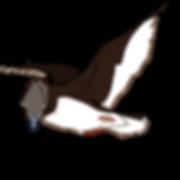 Duck art.png