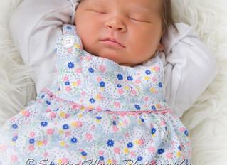 Baby Rose captured