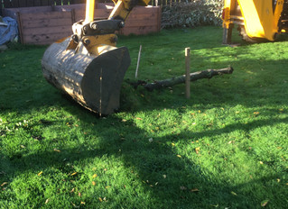 Turf cutting for the New Studio!!
