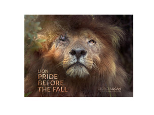 Photographer George Logan new book 'Lion: Pride Before The Fall' to help save Africa's lions