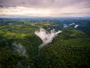 Green news from Colombia, the 2nd most biodiverse country in the world