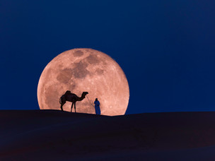 Experience the beauty of the desert sky with Qatar's Arabian Nights astro-tourism experiences