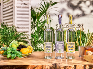 Belvedere launches new naturally flavoured Organic Infusions range