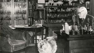 Museum bucket list: Sigmund Freud Museum reopens