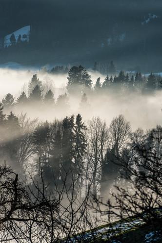 Winter_hoch-5.jpg