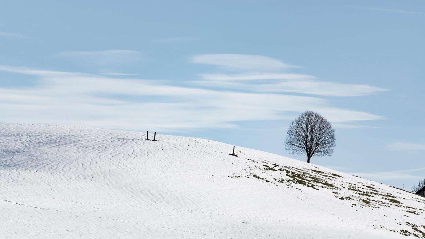 Vergaenglichkeit_Winter-6 Kopie.jpg