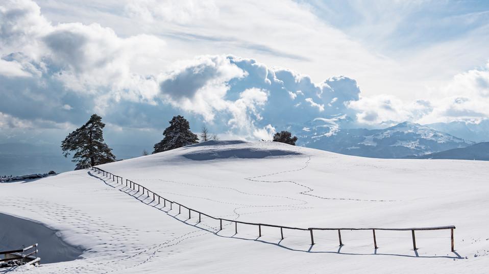 Vergaenglichkeit_Winter-14.jpg
