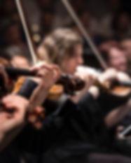 violins-800pxtall.jpg