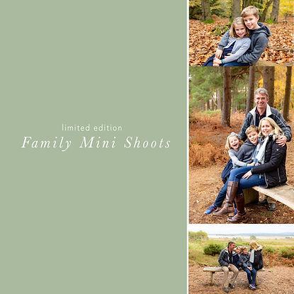 autumn minis title.jpg