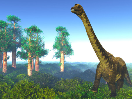 DID YOU KNOW YOUR BRAIN CAN SHRINK? HOW TO AVOID THE DINOSAUR BRAIN