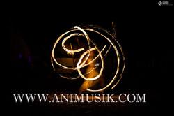 ANIMUSIK La Passion de l'Animation (213).jpg