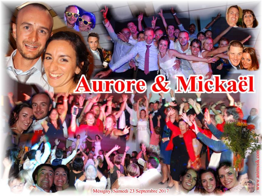 Mariage RUSCONI Mickaël & JUILLET Aurore (Mésigny) (23-09-2017)