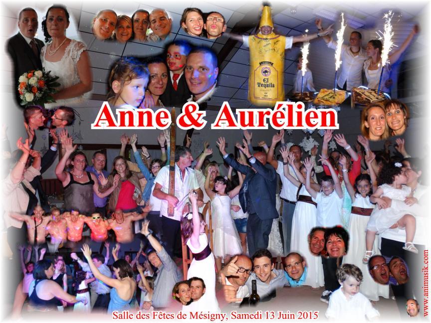 Mariage DEPIGNY Aurélien & Anne (Mésigny) (13-06-2015).jpg