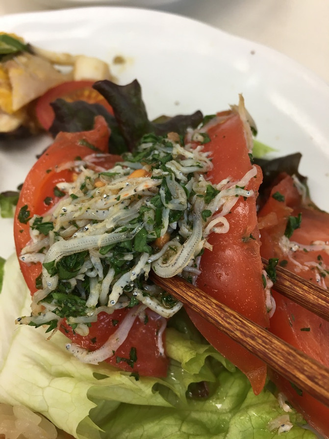 2月定例会:藤沢産トマト