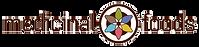 medicinal-foods-logo.png