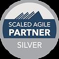 partner-badge-silver-300px.png
