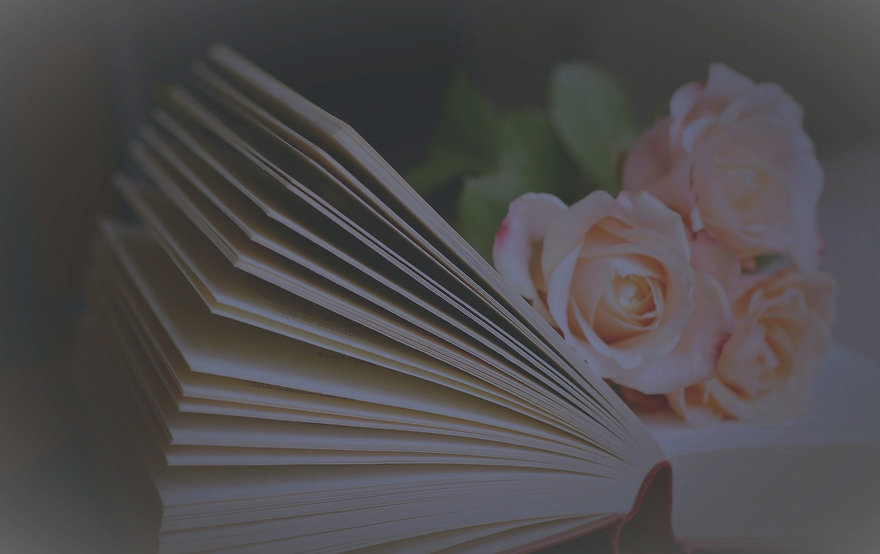 book-1769228_1920_edited_edited.jpg
