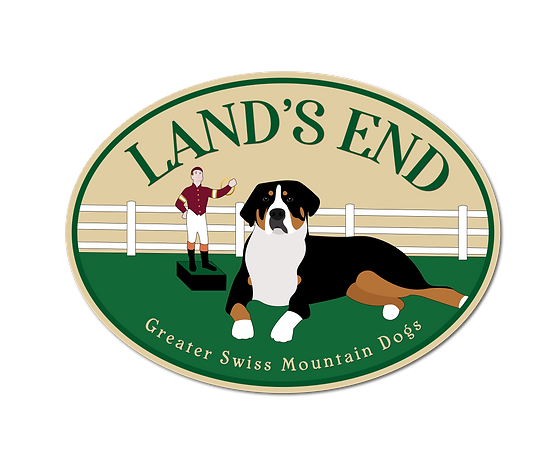 Lands-End-GSMD-LogoPNG.png