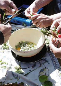 Plantes sauvages ADEV cuisine.JPG