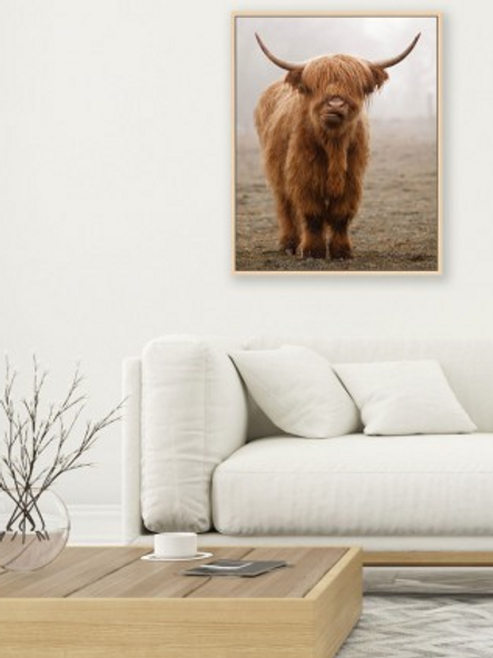 Bovine Calf 100 x 80