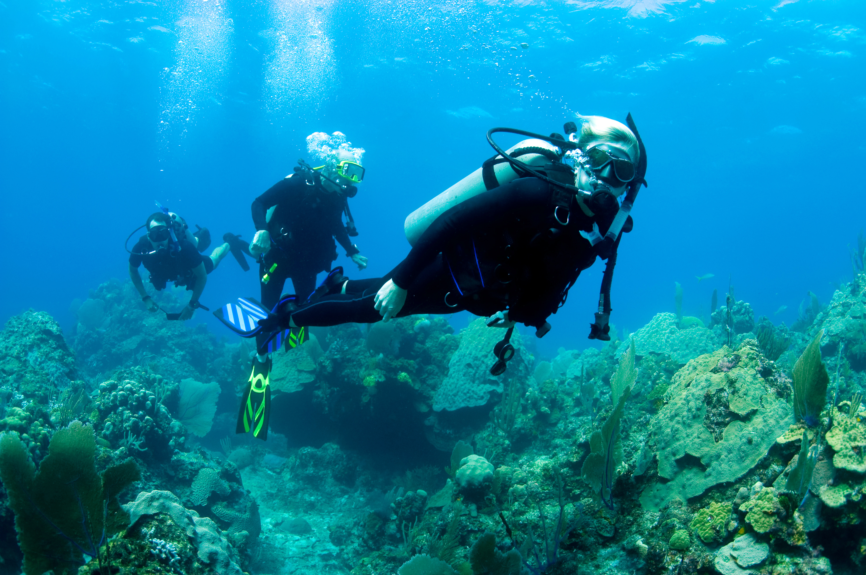 Divemaster as a diving guide