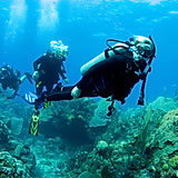 Scuba Students Completing Referral Dives