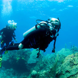 Web Design and Web Development Services. Scuba diving business professional website.