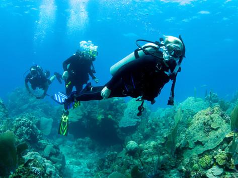 Diver's fitness training an allowable expense - Robert John Osborne v HMRC [2020] UKFTT 373 (TC)