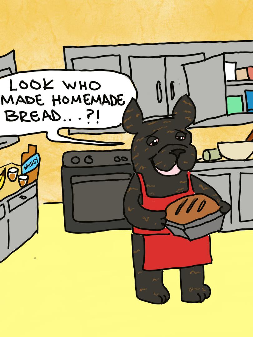 Heather & the Quarantine Pups_8