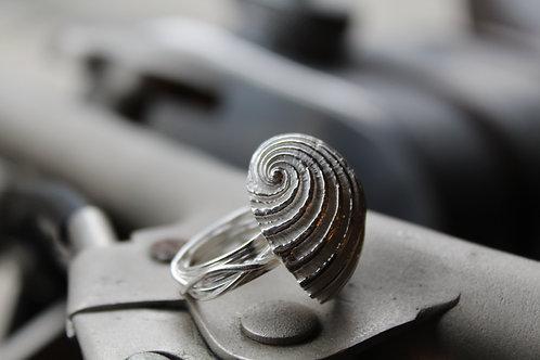 Silver Nautilus Ring