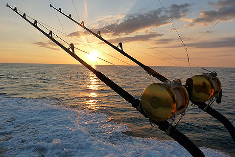 Reel sunset image.jpg