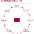 Health-Surveillance-Cycle