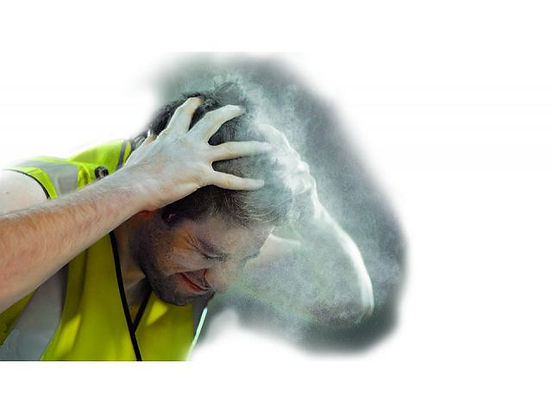Dust Header.jpg
