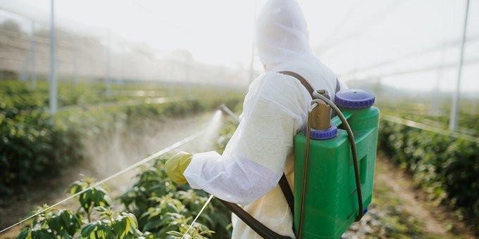 """ALT=""""hse-reach-chemicals-pesticides-brexit"""""""